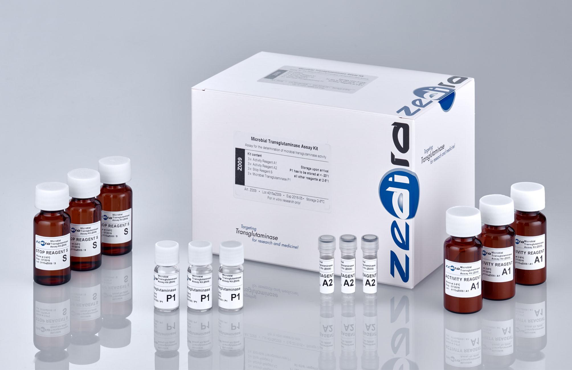 Enzyme assay kit