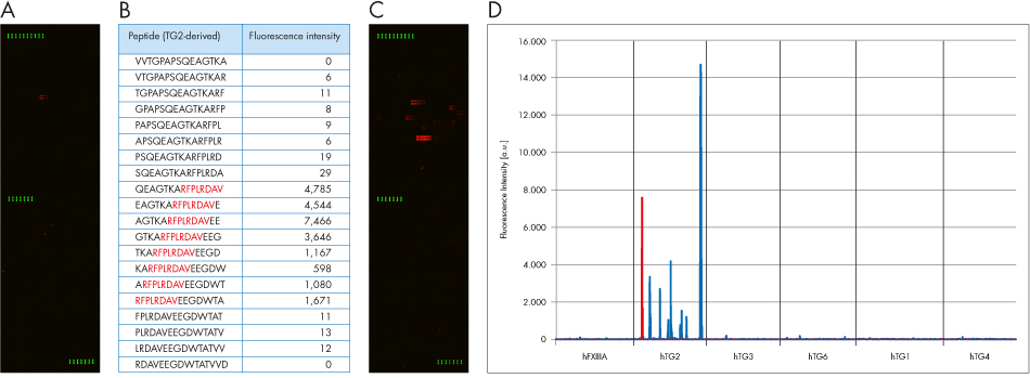 PEPperCHIP Transglutaminase Peptide Microarray Poster Figure 1