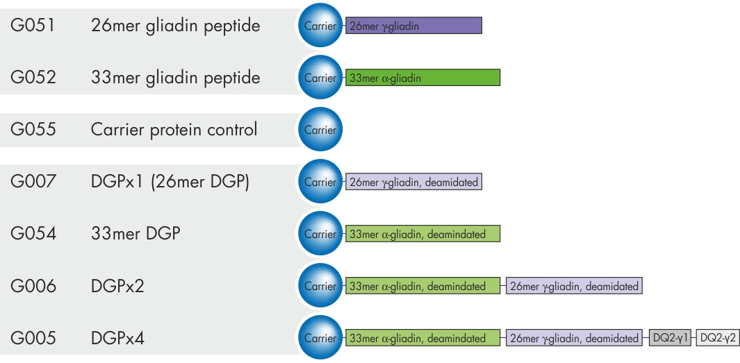 gliadin peptides and DGP variants